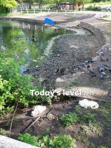 water level2